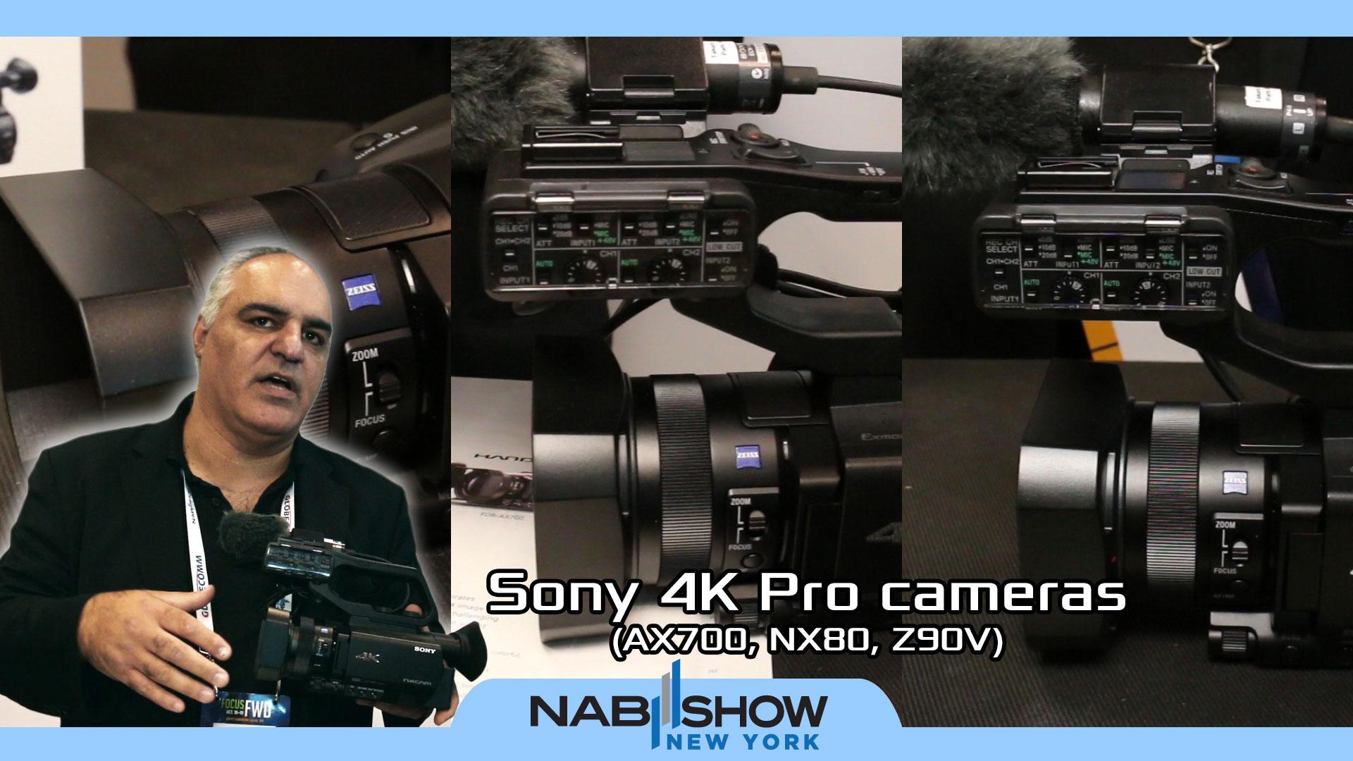 Sony 4K Camcorders