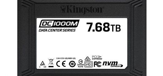 Kingston DC1000M